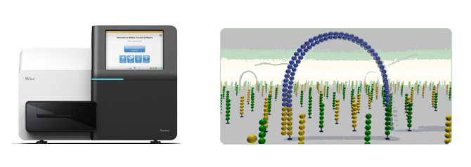 MiSeq instrument and checmisty